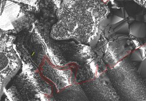 Intensity image of stream area highlighting the difficulty that can arise in defining the exact boundaries of water bodies.