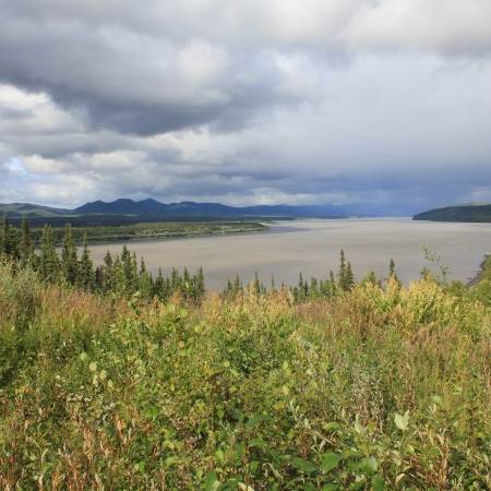 Looking upriver at Ruby on the Yukon River on a sunny afternoon.