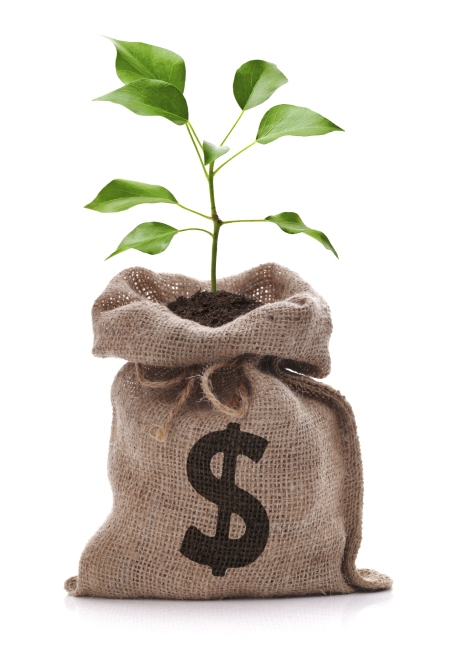 Image of a tree growing out of a burlap sack with a dollar sign on it.