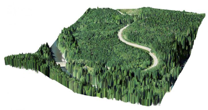 A lidar TIN with imagery overlaid.