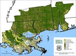 image showing impacts to forests after hurricane Katrina