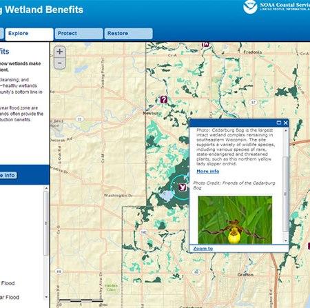 Screen grab of the wetlands benefits tool.