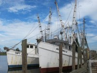 Image of shrimping boats at dock.
