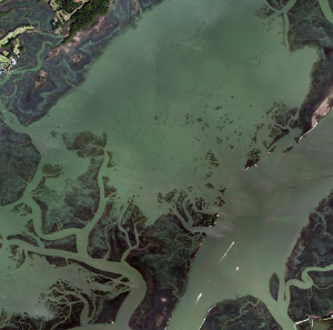 High resolution imagery at high tide. Mud flats and oyster bar are obscured.