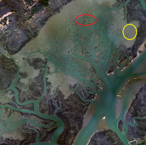 High resolution aerial imagery at mean lower low tide showing mud flats and an oyster bar.