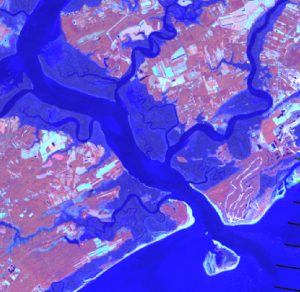 Landsat imagery of Edisto and Charleston at low tide